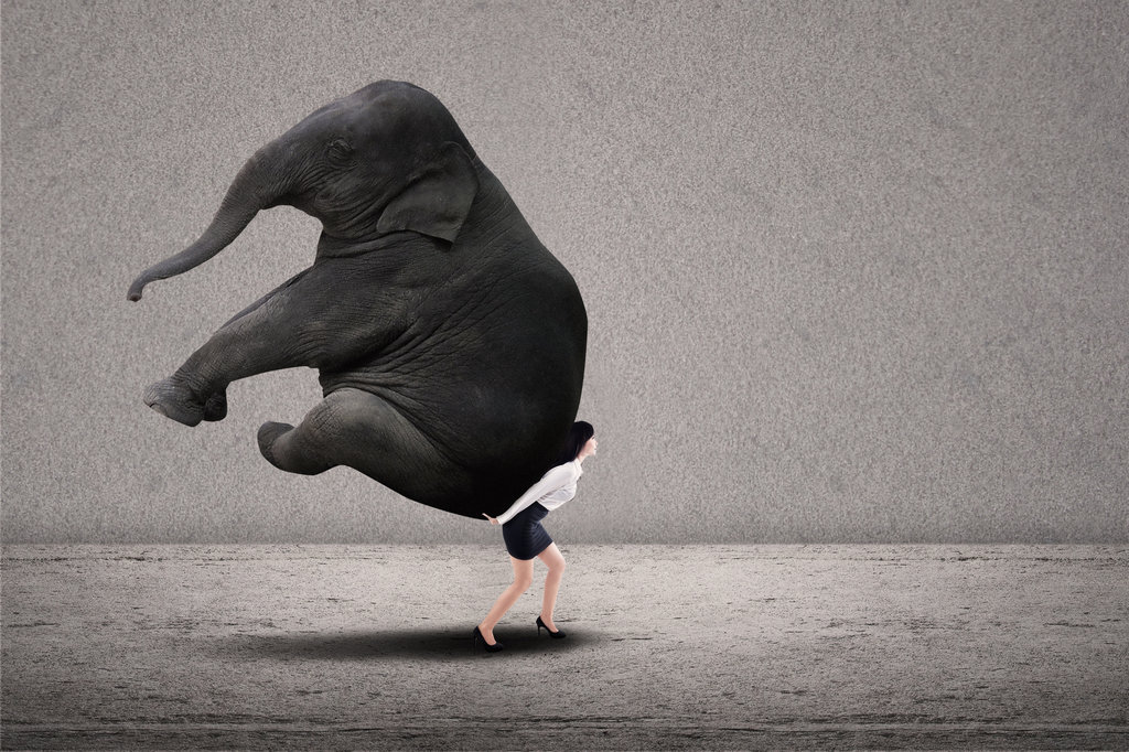 Expat Energy Elephant Saboteur